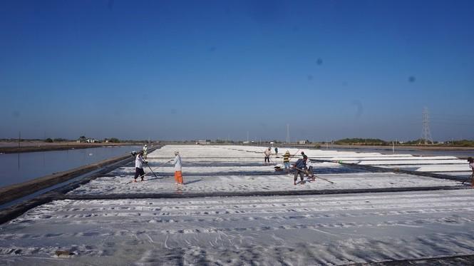 Cận cảnh 'nghề gieo nước biển' đầu năm ở phương Nam - ảnh 4