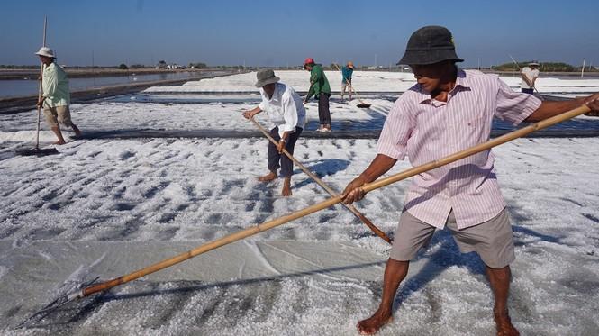 Cận cảnh 'nghề gieo nước biển' đầu năm ở phương Nam - ảnh 5