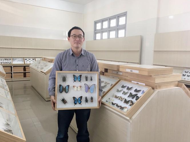 Bảo tàng côn trùng - ảnh 1