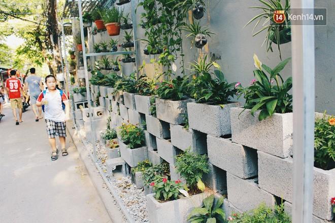 Sinh viên Hà Nội biến bãi rác