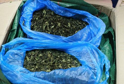11 kiện hàng nghi chứa chất ma túy bị phát hiện ở Hà Nội - ảnh 1