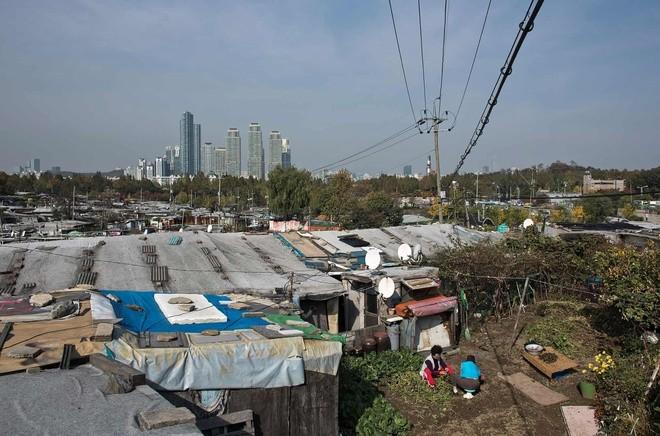 Khu ổ chuột quay 'Ký sinh trùng' từng khiến thế giới sốc về Hàn Quốc - ảnh 1