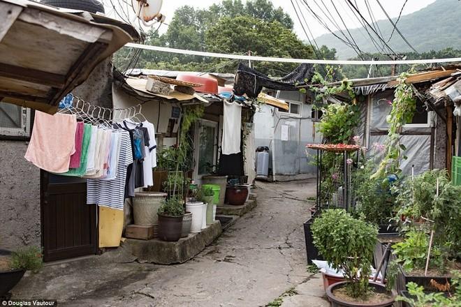Khu ổ chuột quay 'Ký sinh trùng' từng khiến thế giới sốc về Hàn Quốc - ảnh 5