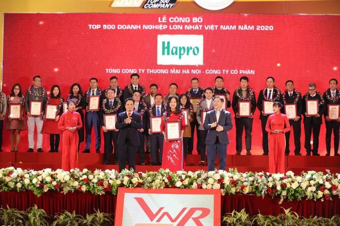 Hapro: 14 năm liên tiếp được vinh danh top 500 doanh nghiệp lớn nhất Việt Nam - ảnh 1
