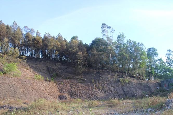 Hình ảnh mới nhất vụ cháy núi Hồng - ảnh 12