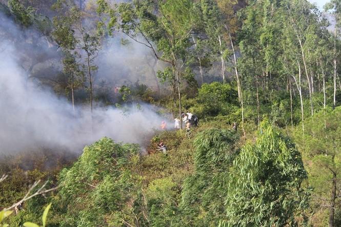 Hình ảnh mới nhất vụ cháy núi Hồng - ảnh 5