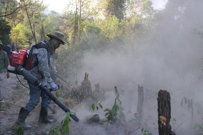 Hình ảnh mới nhất vụ cháy núi Hồng - ảnh 8