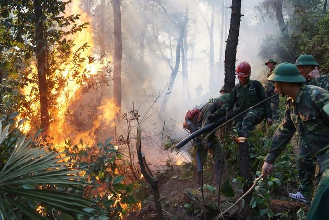 Hình ảnh mới nhất vụ cháy núi Hồng - ảnh 3