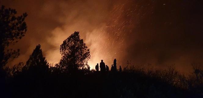 Chưa sử dụng trực thăng để chữa cháy rừng - ảnh 1