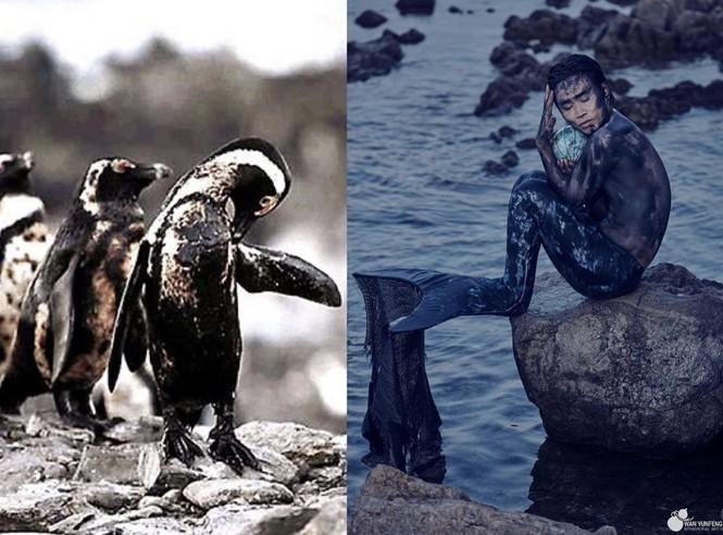 Biến rác thải thành thời trang, tái hiện nỗi đau trước khi chết của sinh vật biển - ảnh 5