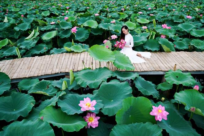 Học viện Nông nghiệp Việt Nam - nơi viết tiếp câu chuyện tuổi trẻ của bao thế hệ sinh viên - ảnh 12
