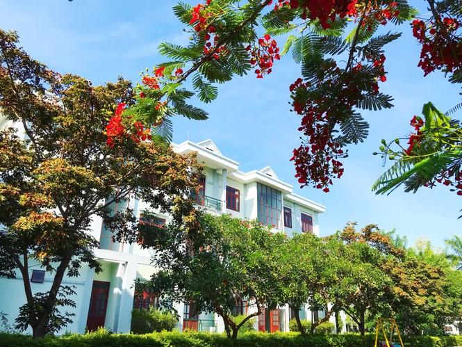 Đến trường ĐH Nội vụ Hà Nội Phân hiệu tại Quảng Nam – Đà Nẵng để học tập, khám phá du lịch - ảnh 13