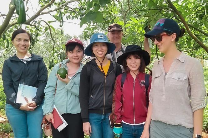 Giúp nông nghiệp Việt Nam sẵn sàng cho tương lai - ảnh 1