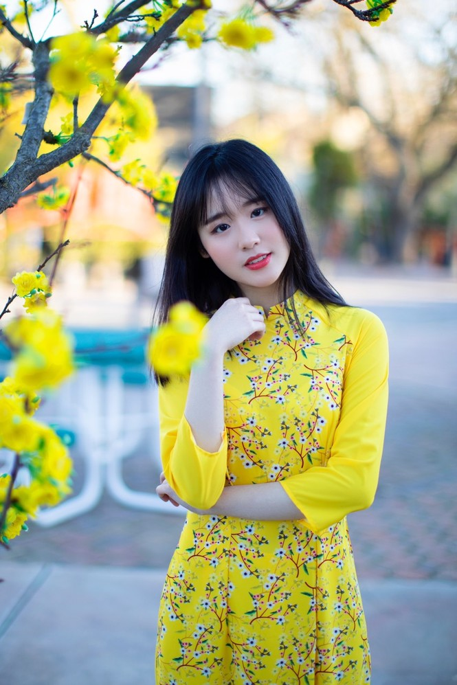 Rực rỡ sắc vàng với bộ ảnh áo dài Việt Nam đón Tết của du học sinh tại Mỹ - ảnh 5