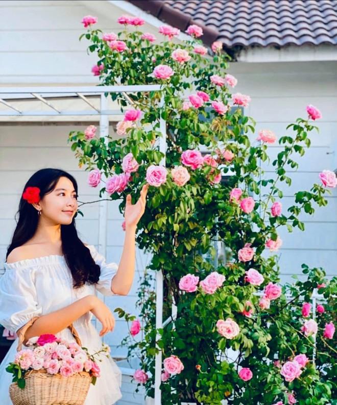 Con gái Quyền Linh được khen xinh đẹp như Hoa hậu tương lai - ảnh 5