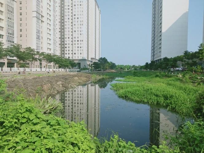 """TP. HCM: Cao ốc """"quá tải"""" lấp kênh rạch làm bãi giữ xe, lấy chiếm vỉa hè, bờ sông làm của riêng ? - ảnh 8"""
