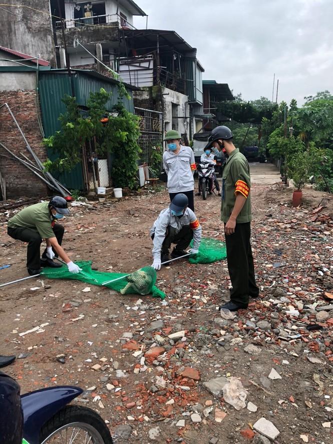 Hà Nội: Quận Ba Đình lập đội bắt chó thả rông - ảnh 2