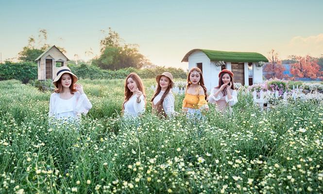 Giới trẻ Hà thành khoe sắc bên vườn hoa cúc họa mi - ảnh 2