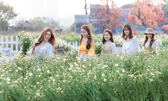 Giới trẻ Hà thành khoe sắc bên vườn hoa cúc họa mi - ảnh 10