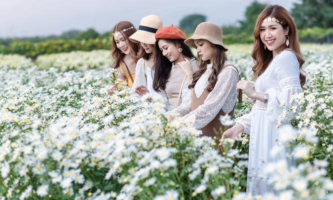 Giới trẻ Hà thành khoe sắc bên vườn hoa cúc họa mi - ảnh 3