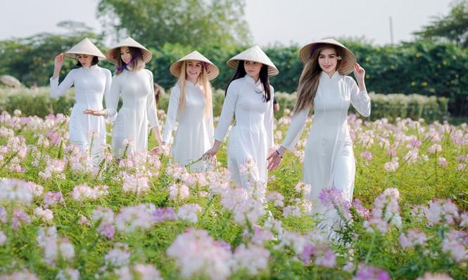 Thiếu nữ phương Tây khoe sắc giữa đồng hoa hoạ mi Hà thành - ảnh 7
