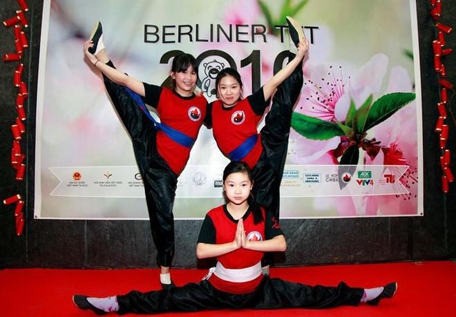 Người Việt xa xứ vui Tết, gây quỹ giúp trẻ em vùng cao - ảnh 2