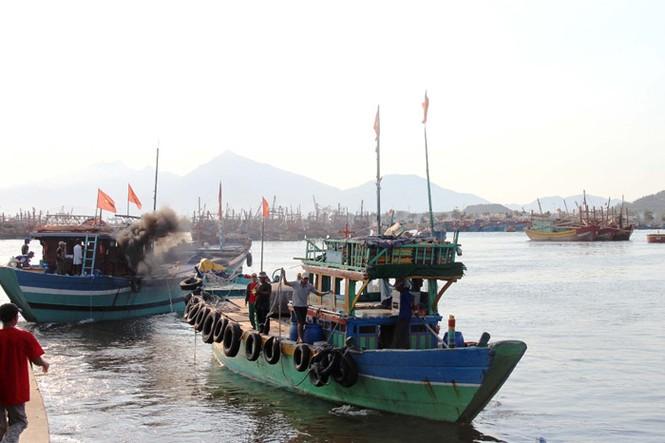 Xúc động hình ảnh ngư dân Đà Nẵng trước lúc ra khơi - ảnh 8