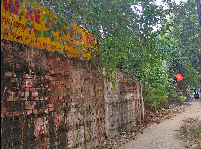 Cận cảnh khu 'đất vàng' hơn 6.000 m2 rơi vào tay tư nhân ở TPHCM