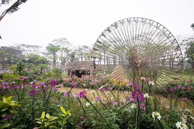 Công viên rực rỡ hoa xuân ở vùng ven Hà Nội - ảnh 5