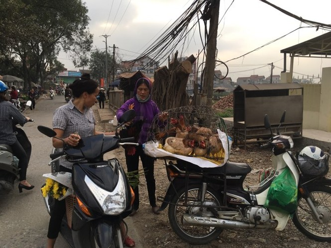 Rau xanh, hoa tươi ở Hà Nội rớt giá thê thảm sau Tết - ảnh 2