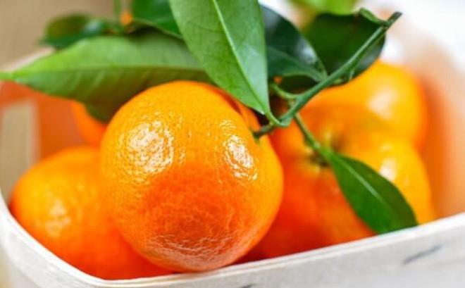 Những thực phẩm là 'thần dược' cho da trong mùa đông - ảnh 8