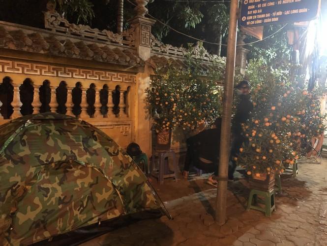 Dân buôn thức trắng đêm 'canh' đào, bưởi  trên vỉa hè Hà Nội - ảnh 3