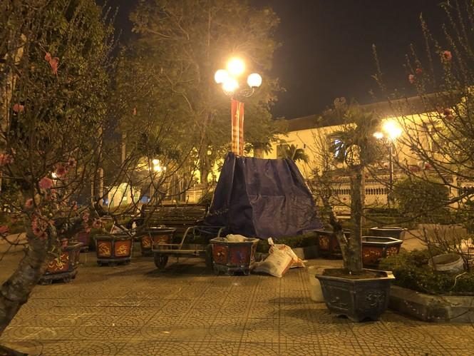 Dân buôn thức trắng đêm 'canh' đào, bưởi  trên vỉa hè Hà Nội - ảnh 1