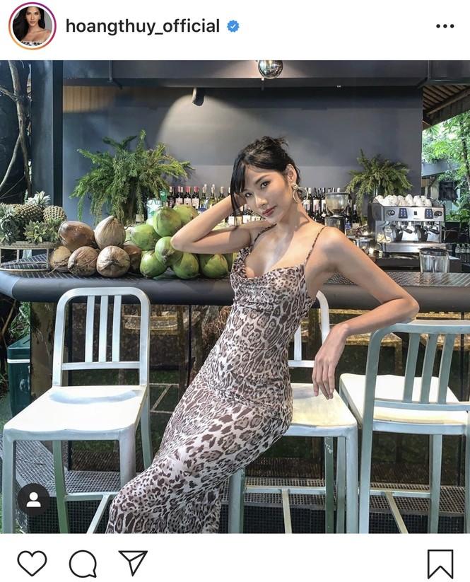 Đỗ Mỹ Linh 'kín cổng cao tường', Hoàng Thuỳ khoe đường cong gợi cảm với váy da báo - ảnh 3