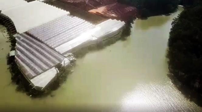 San bạt núi đồi đe dọa hồ cấp nước sinh hoạt của TP Đà Lạt - ảnh 2
