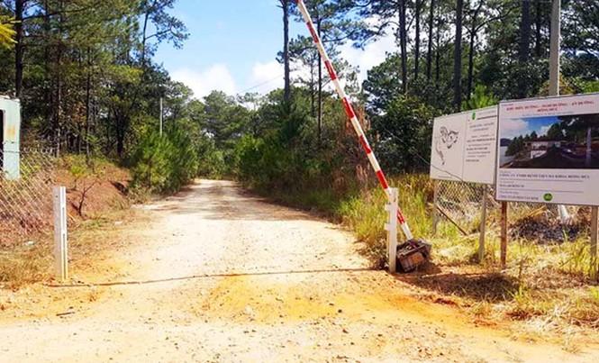 Xâm hại rừng phòng hộ di tích quốc gia để xây khu nghỉ dưỡng cao cấp - ảnh 1