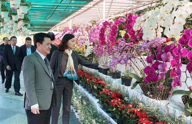 Muôn hoa khoe sắc rực rỡ tại Hội hoa xuân Đà Lạt - ảnh 1