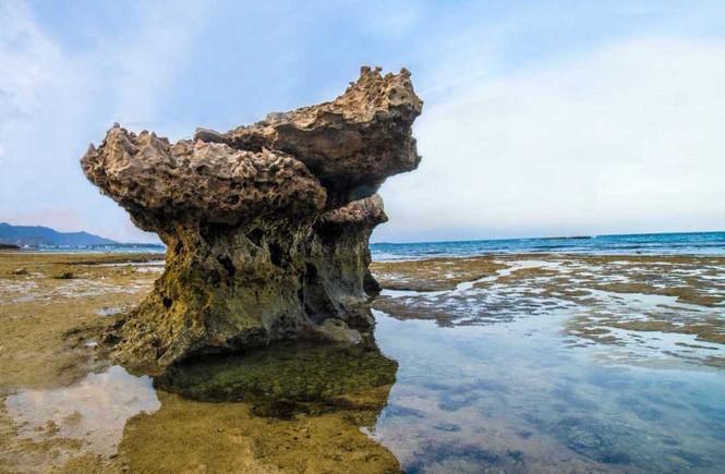 Kỳ thú rạn san hô cổ hóa thạch trên cạn - ảnh 2