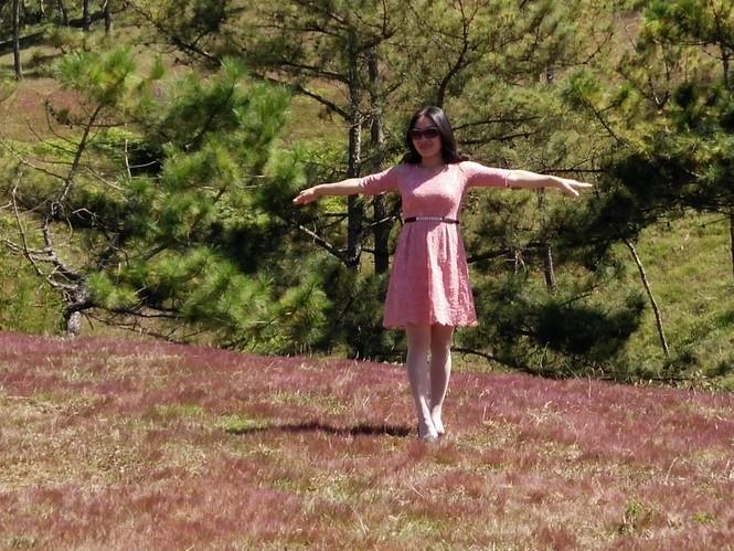 Đồi cỏ hồng Lâm Đồng khiến du khách mê mẩn - ảnh 2
