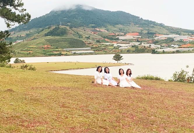 Đồi cỏ hồng Lâm Đồng khiến du khách mê mẩn - ảnh 3