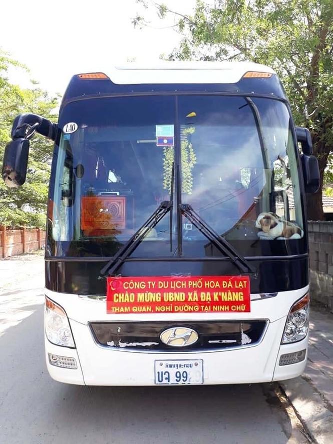 Xe khách biển số Lào, Campuchia hoạt động rầm rộ ở Lâm Đồng - ảnh 4