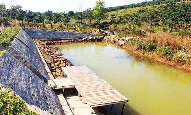Công an vào cuộc điều tra vụ phân lô bán đất nông nghiệp ở Bảo Lộc - ảnh 2