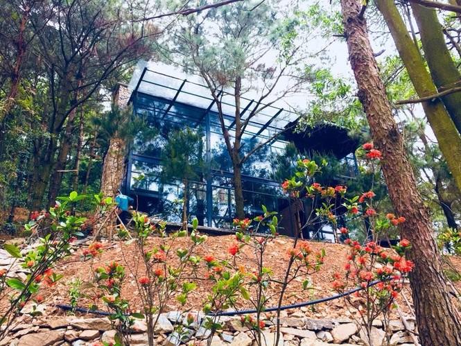 Bát nháo thị trường đất đai rừng phòng hộ Sóc Sơn sau lệnh thanh tra - ảnh 2