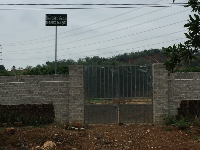 Bát nháo thị trường đất đai rừng phòng hộ Sóc Sơn sau lệnh thanh tra - ảnh 5