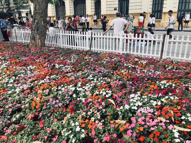 Những hình ảnh đẹp tại lễ hội hoa anh đào - ảnh 11