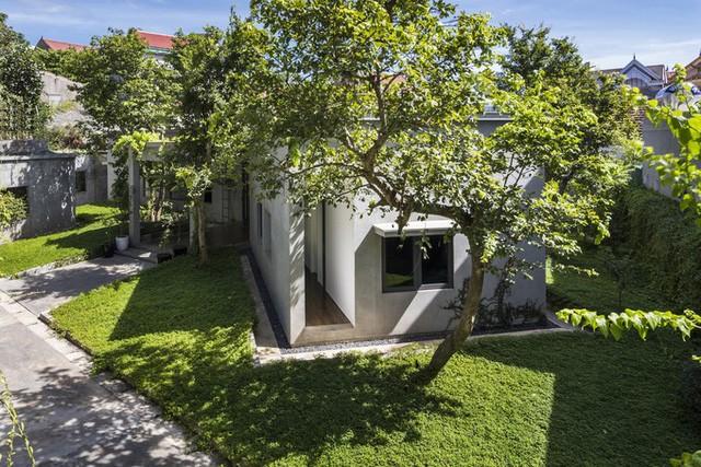 Gia chủ Nghệ An xây nhà hình chữ Y vì vướng cây - ảnh 5