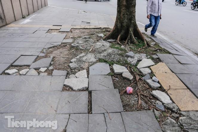 Sau ba năm lát, đá 'độ bền 70 năm' và gạch vỉa hè nhiều nơi vỡ nát - ảnh 8