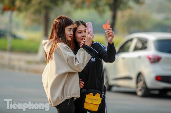 Thiếu nữ Hà thành khoe sắc bên hàng phong lá đỏ đẹp như xứ Hàn - ảnh 2