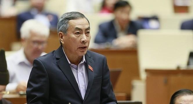 Chất vấn Bộ trưởng Công Thương về sản phẩm cài cắm 'đường lưỡi bò' - ảnh 2