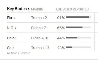 Mỹ sắp có cuộc bầu cử nhiều người bỏ phiếu nhất trong một thế kỉ - ảnh 34